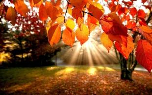 La AEMET prevé un otoño con temperaturas superiores