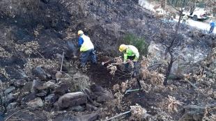 La Junta acomete labores de corrección hidrológica forestal en Garganta la Olla, tras los incendios del pasado verano