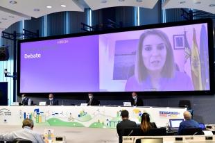 Acción Exterior ratifica el compromiso de Extremadura con el Pacto Verde Europeo
