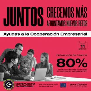 Las empresas extremeñas pueden solicitar las ayudas a la cooperación empresarial hasta el 11 de enero