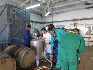 Un total de 1.412 jóvenes se incorporan a la actividad agraria en los últimos 3 años en Extremadura con ayudas de la Junta