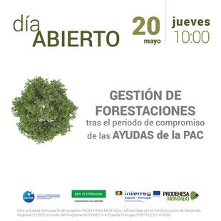 ICMC-CICYTEX organiza un seminario web dedicado a la gestión de forestaciones de tierras agrarias