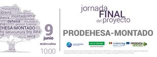El proyecto PRODEHESA-MONTADO concluye con una jornada final para la divulgación de resultados