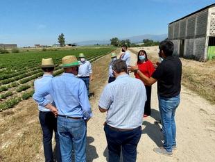 Begoña García visita las instalaciones de Biostevera en Villanueva de la Vera