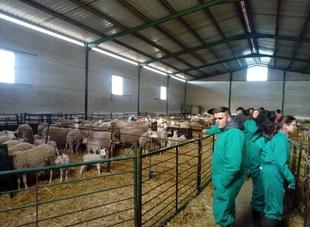 El Centro de Formación del Medio Rural de Moraleja oferta tres ciclos de FP en ganadería y sector agropecuario