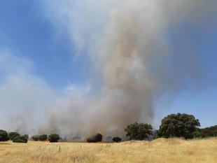 El Infoex participa durante esta semana en 37 incendios forestales en los que han ardido 580 hectáreas