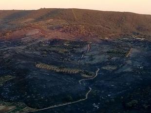 El Infoex participa durante esta semana en 33 incendios forestales afectando a 187 hectáreas