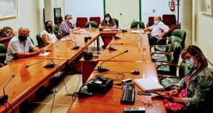 Begoña García traslada al Consejo Asesor Agrario de Extremadura el documento base del plan estratégico de la PAC