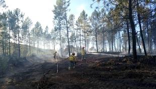 La campaña de peligro alto de incendios en Extremadura finaliza con 5.227 hectáreas afectadas, un 25 por ciento menos que en el verano anterior