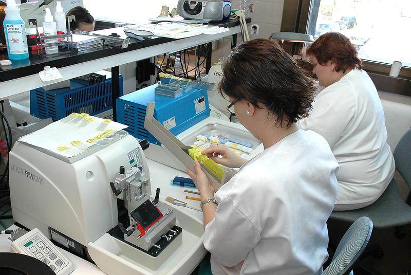 Técnicos de Computaex simplifican los estudios genéticos relacionados con patologías en pacientes