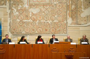 Manzano propondr� una Declaraci�n Institucional para apoyar la firma de un Pacto de Estado por la Infancia