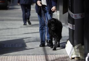 La contrataci�n de profesionales con discapacidad aumenta un 22,6 por ciento en Extremadura